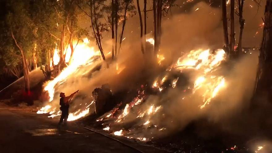 Hundreds of firefighters battle new wildfire in California
