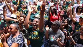 South African rugby fans celebrate World Cup victory