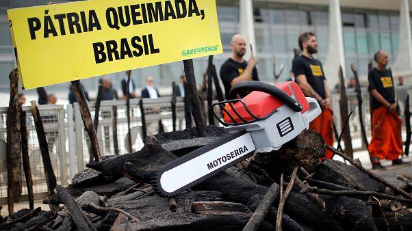 Çevre örgütü Greenpeace Amazonlar'daki yangınlardan dolayı Brezilya'da hükümeti protesto etti.