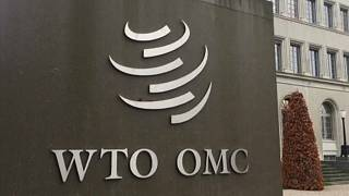 EU argues against US metal tariffs at WTO