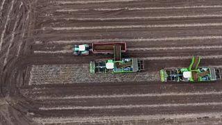 """La corrupción salpica a la Política Agrícola Común, en """"The Brief from Brussels"""""""