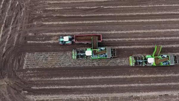 Wer bereichert sich an EU-Agrargeldern? Artikel löst Kontroverse aus