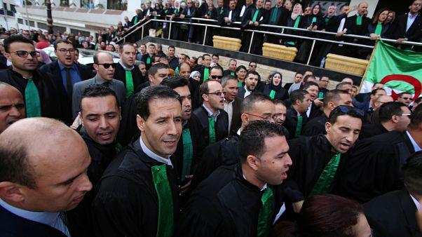 الجزائر: فتح تحقيق بشأن صدامات بين الشرطة وقضاة مضربين