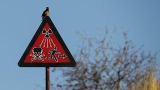 Жизнь у радиоактивного могильника