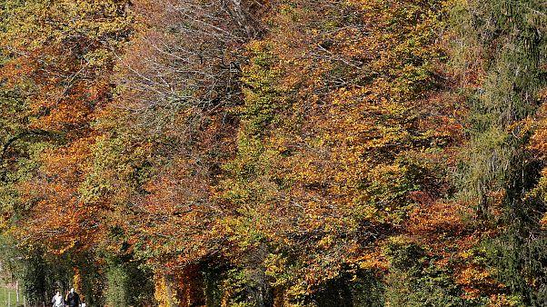People hike during sunny autumn weather near Horgenberg, Switzerland