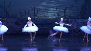 'El lago de los cisnes' con los pies en el agua