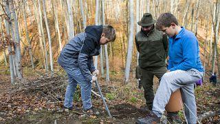 Diákok fát ültetnek az Ipoly Erdő Zrt. területén, a Nógrád megyei Diósjenő közelében 2017. november 6-án