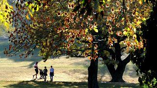 Fővárosi fiatalok sétálnak nyáriasan meleg napsütésben a Tabán közparkjának sárguló levelű fái alatt.