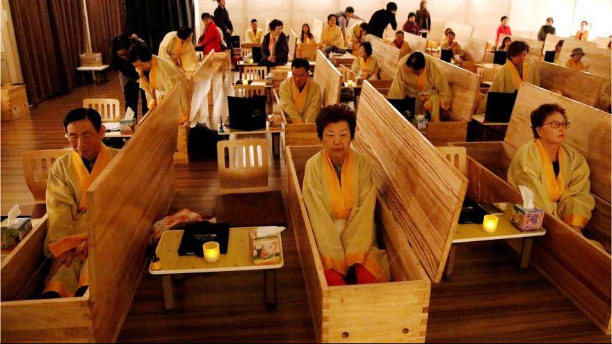 کرهایها برای زندگی بهتر تمرین مرگ میکنند