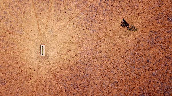 تاثیرات خشکسالی در نیو ساوت ولز استرالیا