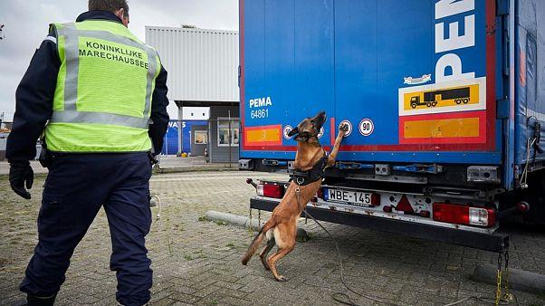 Dutch royal military police