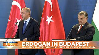 Turkey's Erdoğan booed by crowd in Budapest over Syria military incursion