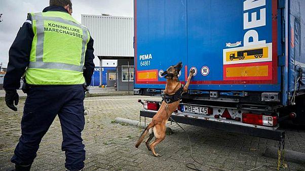 الشرطة العصكرية الملكية الهولندية