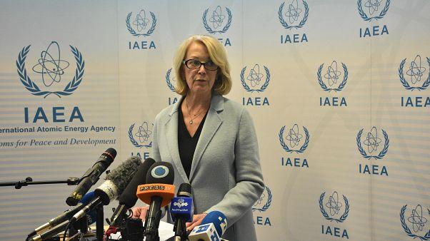 ABD'nin Birleşmiş Milletler (BM) Viyana Ofisi Nezdinde Daimi Temsilcisi Büyükelçi Jackie Wolcott