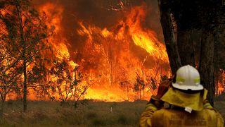Австралия в пламени пожаров