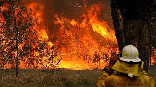 Incêndios na costa leste da Austrália provocam três mortos