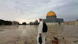 شاهد: فلسطيني يطعم الطيور والهررة في باحة المسجد الأقصى منذ 20 عاماً