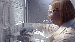 ABD'de yeni HIV alt türünü tanımlayan laboratuvar