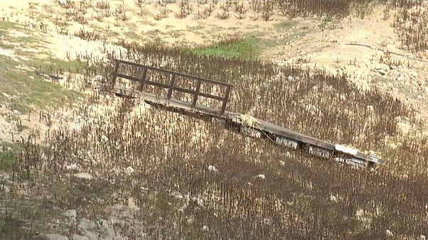 Agricultura sofre com seca e má gestão de recursos hídricos