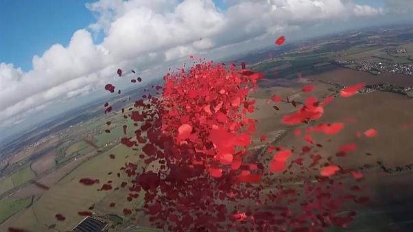 750,000 poppies dropped over the Battle of Britain memorial as part of Remembrance day