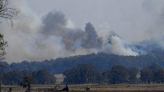 Сидней во власти огненной стихии