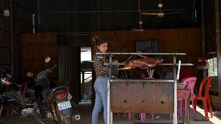 Kamboçya'da köpek eti pişiren bir kadın