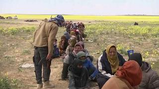 Турция возвращает боевиков ИГИЛ в Европу и США