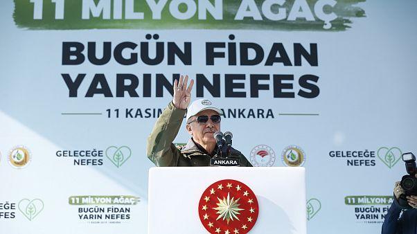 Recep Tayyip Erdoğan ağaç dikme etkinliğinde