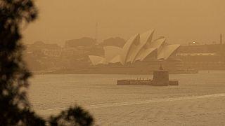 سیدنی در محاصره آتش