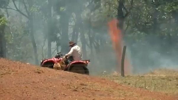 Újabb tüzek lobbantak fel Ausztráliában, a rendőrség gyújtogatás feltételez