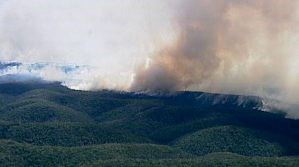 Buschbrände an der Ostküste: Evakuierungen an beliebtem Touristenort