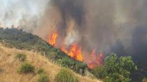 Υπό πλήρη έλεγχο η πυρκαγιά στο Εθνικό Δασικό Πάρκο Ακάμα