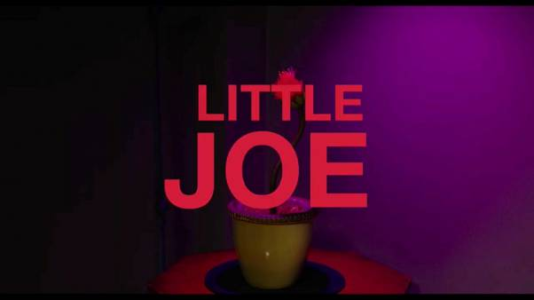 "Cinema: ""Little Joe"", una pianta unica"
