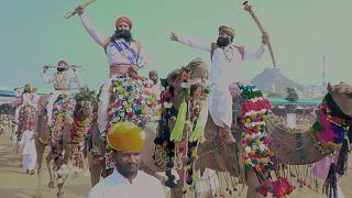 Hindistan'daki deve festivaline dört yüz bin kişi katıldı
