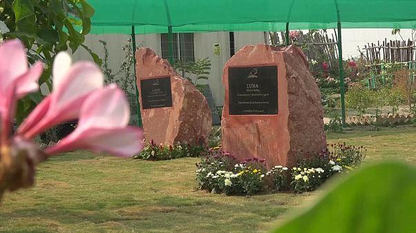 Stèles en mémoire de deux éléphants dans le mémorial de Mathura en Inde