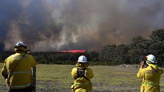 Bozóttüzek: vészhelyzet Ausztráliában