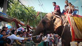 Más de 160 elefantes desfilan en Tailandia