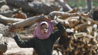 فتاة تحمل الحطب في أحد الأسواق في ظل نقص الوقود وغاز الطهي في صنعاء باليمن