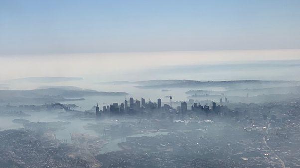 Сидней в дыму от пожаров