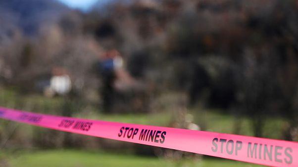 Türkiye'nin doğu sınırlarında 20 bin mayın imha edildi