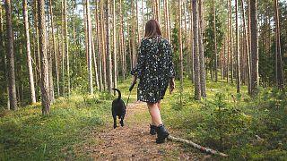 كلاب تقتل امرأة حاملا أثناء تنزهها في غابة شمال فرنسا