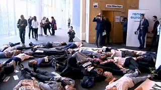 "The Brief from Brussels: Klimaproteste und ""Die-In"" im EU-Parlament"