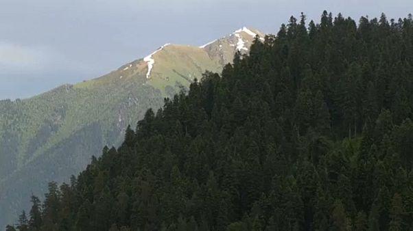 Υπό απειλή τα δάση του Καυκάσου