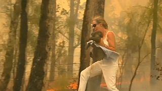 Австралия: огонь в Аделаиде
