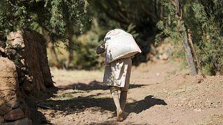 مزارع يمني في وادي الظهر بالقرب من صنعاء