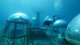 شاهد: زراعات تحت الماء على الساحل الإيطالي قد تلهم فلاحي المستقبل
