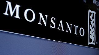 Monsanto zehirli tarım ilacı kullandığı suçlamasını kabul etti
