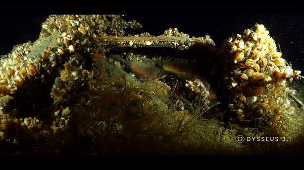 Buzos de Odysseus encuentran armamento peligroso de la Segunda Guerra Mundial en un lago suizo