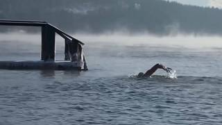 رجل روسي يسبح في بحيرة بايكال في درجة حرارة تدنت تحت الصفر. 24/11/2019