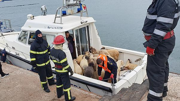 The Palau-flagged ship overturned as it left Romania's Midia port